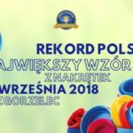 W Zgorzelcu będą bić Rekord Polski dla chorego Aleksa